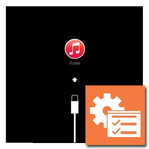 Software herstel iPad 5